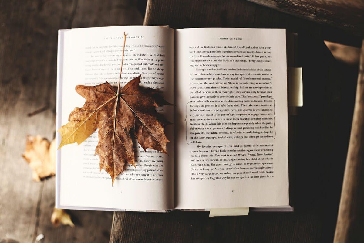 Diseñamos libros, novelas, ensayos...